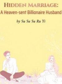 Hidden Marriage: A Heaven-sent Billionaire Husband
